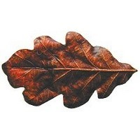 Notting Hill NHK-144-BHT, Oak Leaf Knob in Hand-Tinted Antique Brass, Leaves Collection