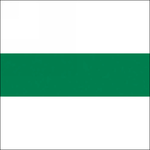 "Edgebanding PVC 20270T Spectrum Green, 15/16"" X .018"", 600 LF/Roll, Woodtape 20270T-1518-1"