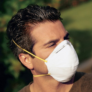 Northern Safety Dust Mask, N95, NIOSH Approved, No Exhaust Valve, 20093, Box/20