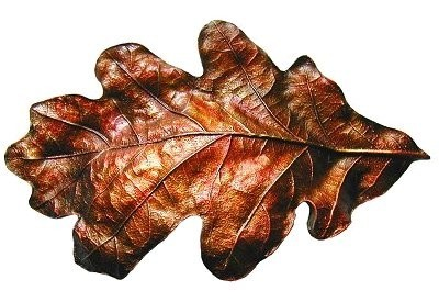 Notting Hill NHBP-844-BHT, Oak Leaf Bin Pull in Hand-Tinted Brass, Leaves