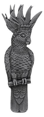 Notting Hill NHP-325-AP-L, Cockatoo Pull in Antique Pewter (Vertical - Left Side), Tropical
