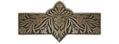 Notting Hill NHP-678-AB, Dianthus Pull in Antique Brass, English Garden