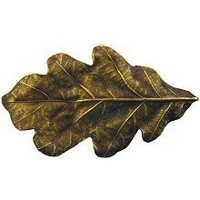 Notting Hill NHK-144-AB, Oak Leaf Knob in Antique Brass, Leaves