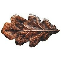 Notting Hill NHK-144-AC, Oak Leaf Knob in Antique Copper, Leaves