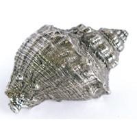 Emenee OR422ABS, Knob, Murex Conch, Antique Bright Silver